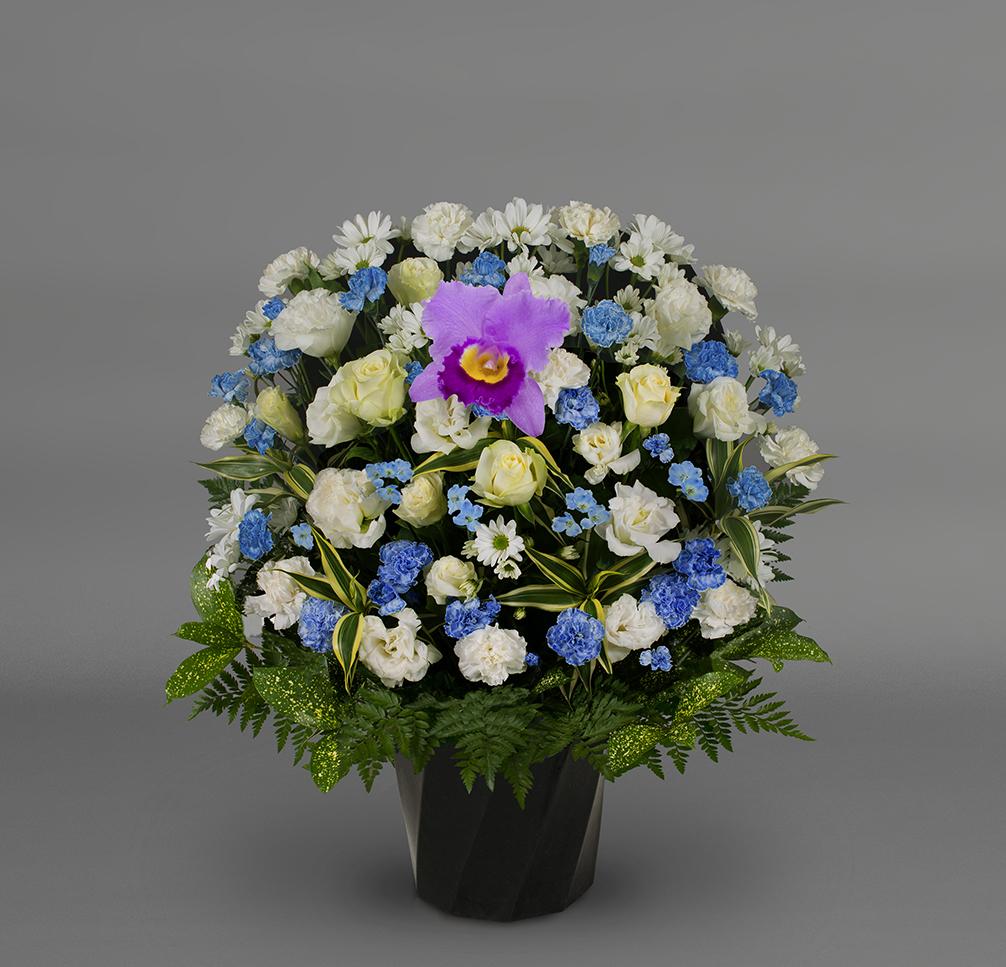 洋花 可憐FY‐1504